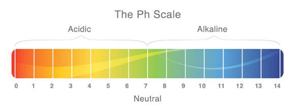 Ph indicator.