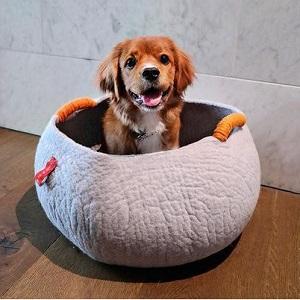 Choose Dog Bed Designer