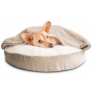 Dog Bed Feature