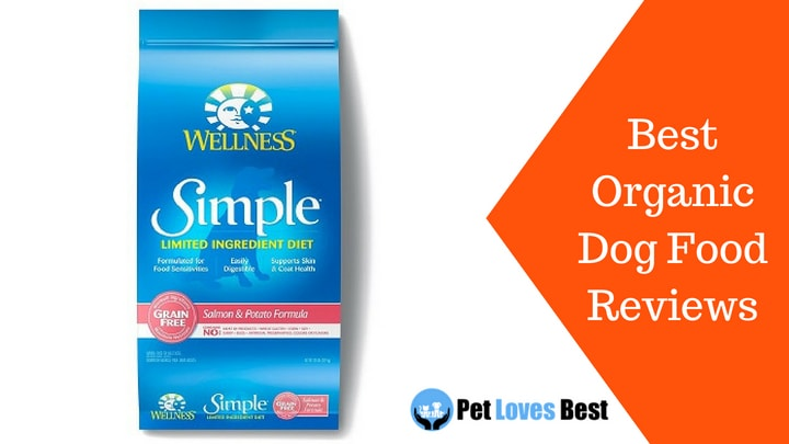 Featured Image Best Organic Dog Food Reviews