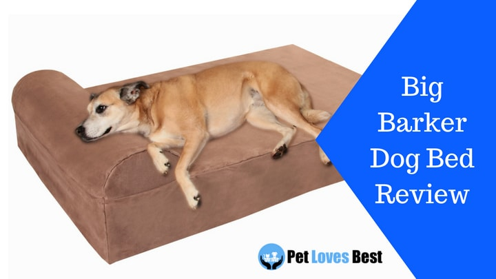 Featured Image Big Barker Dog Bed Review