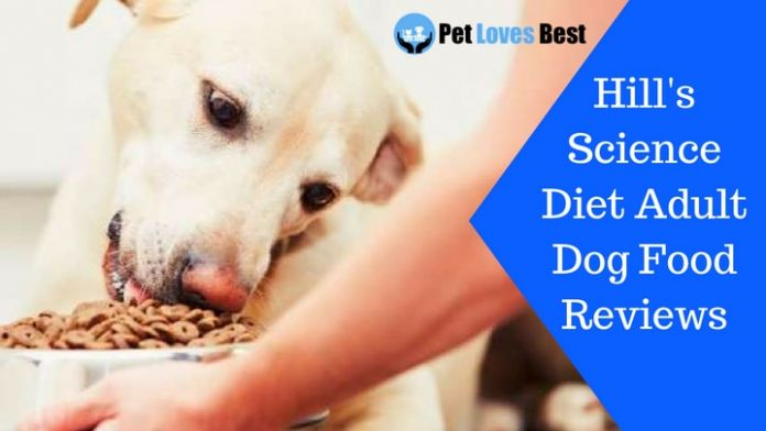 Featured Image Hill's Science Diet Adult Dog Food Reviews
