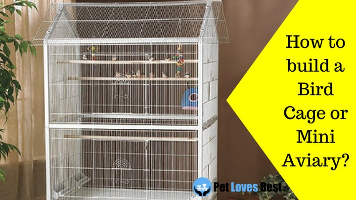 How to build a Bird Cage or Mini Aviary