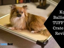 Featured Image K9 Ballistics TUFF Bed Crate Pad Review