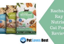 Featured Image Rachael Ray Nutrish Cat Food Review
