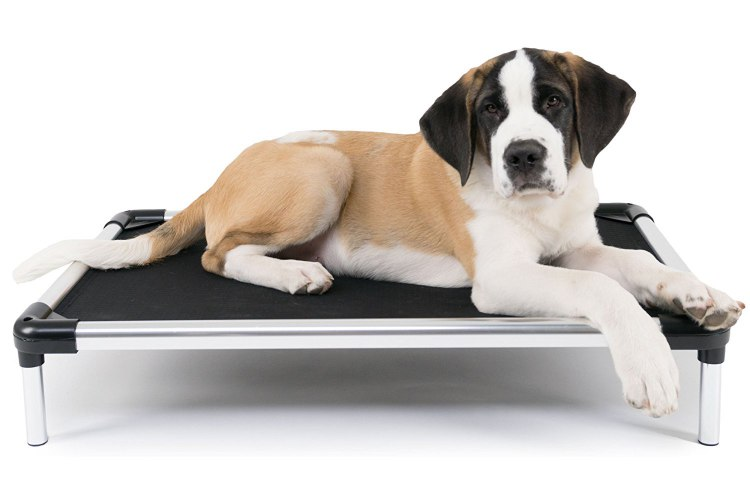 K9 Ballistics Chew Resistant Raised Dog Bed