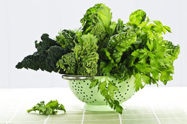 green leafy cat food