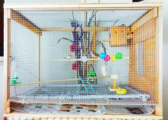decorated-cage