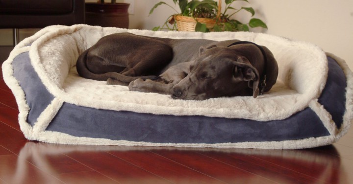 K9 Ballistics LUXURY Orthopedic Bolstered Dog Bed