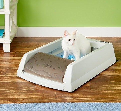 scoopfree orginal automatic cat litter box