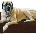 Big Barker Orthopedic Dog Bed main