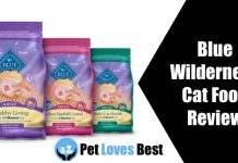 Featured Image Blue Wilderness Cat Food Review