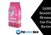 Featured Image IAMS Sensitive Stomach Cat Food Review