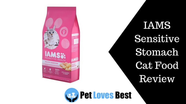 Iams Sensitive Stomach Cat Food Review Ratings 2018