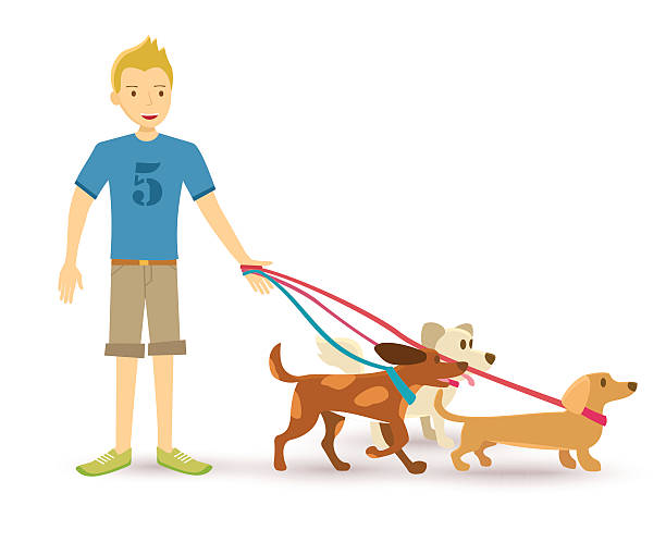 control the dog effectively