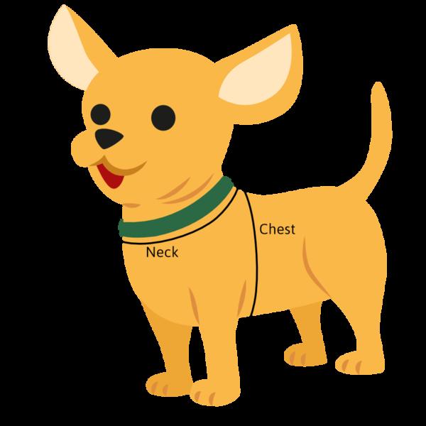 torso dog size