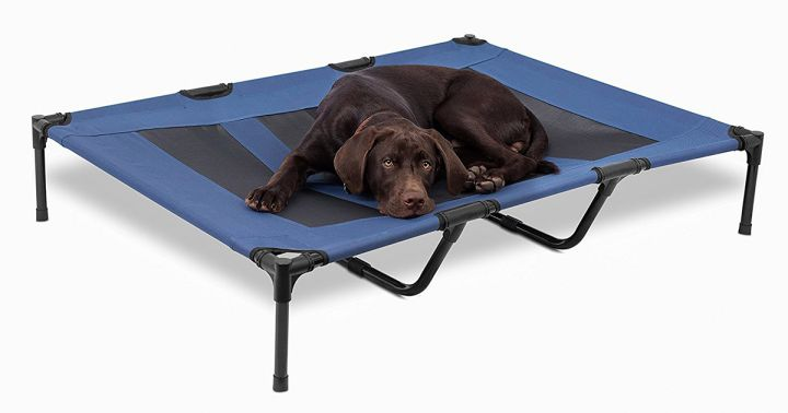 raised elevated dog bed