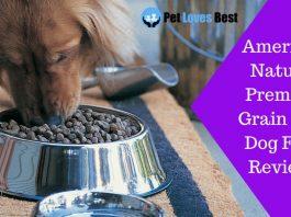Featured Image American Natural Premium Grain Free Dog Food Reviews