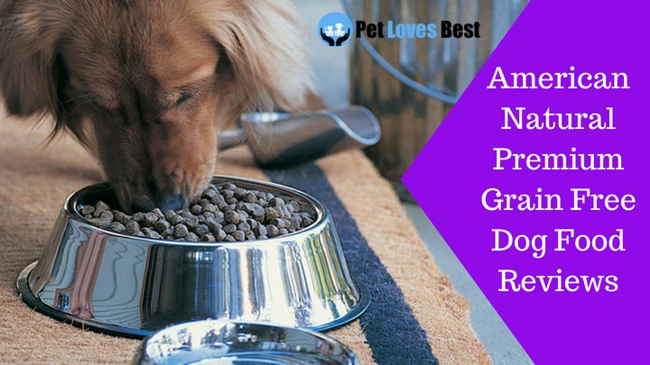 Featured Image American Natural Premium Grain Free Dog Food Reviews