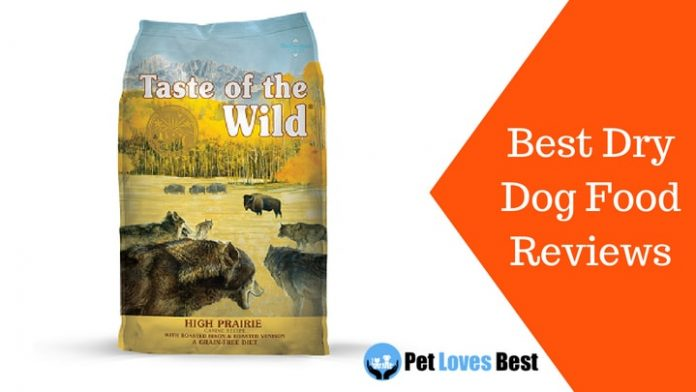 Featured Image Best Dry Dog Food Reviews