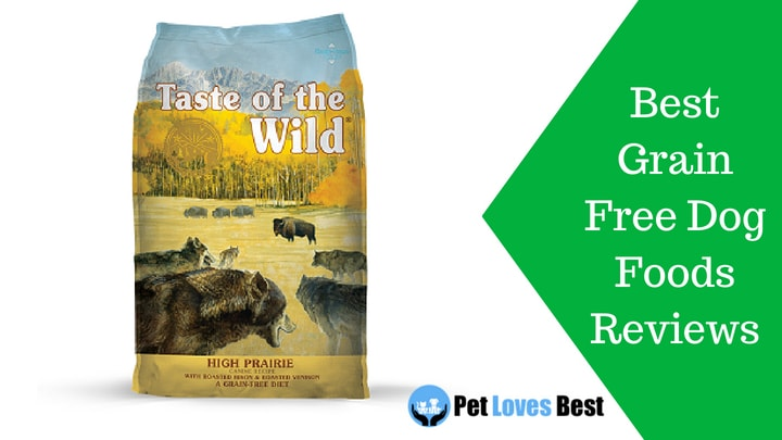 Featured Image Best Grain Free Dog Foods Review