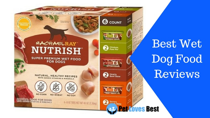 Featured Image Best Wet Dog Food Reviews