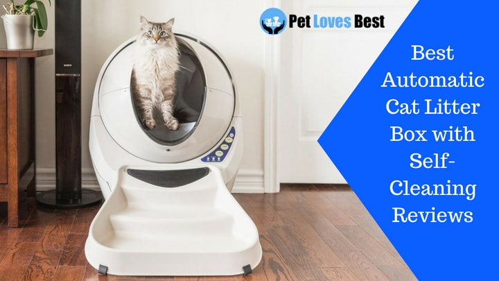 10 Best Automatic Cat Litter Box With Self Cleaning