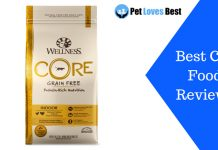 Featured Image Best Cat Food Reviews