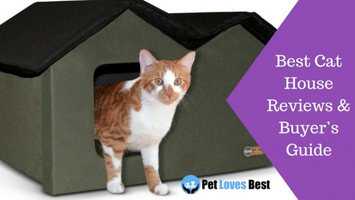 Featured Image Best Cat House Reviews & Buyer's Guide
