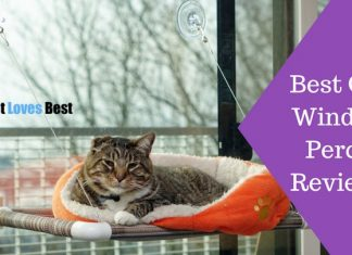 Featured Image Best Cat Window Perch Reviews