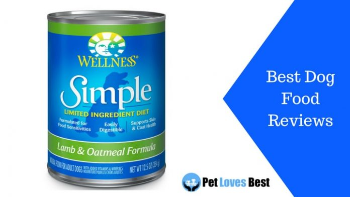 Featured Image Best Dog Food Reviews