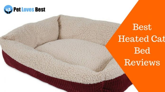 Featured Image Best Heated Cat Bed Reviews