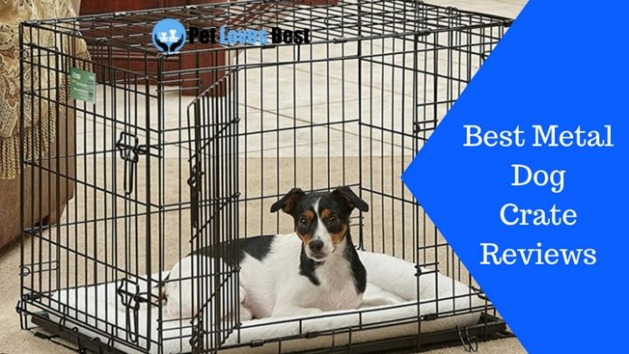 Featured Image Best Metal Dog Crate Reviews
