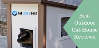 Featured Image Best Outdoor Cat House Reviews