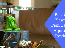Featured Image Best Self Cleaning Fish Tank & Aquarium Reviews
