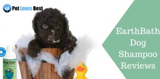 Featured Image EarthBath Dog Shampoo Reviews