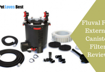 Featured Image Fluval FX6 External Canister Filter Review