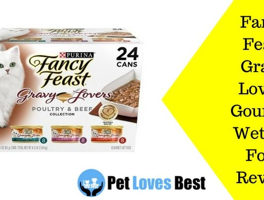 Featured image Fancy Feast Gravy Lovers Gourmet Wet Cat Food Review