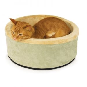 Best Heated Cat Bed