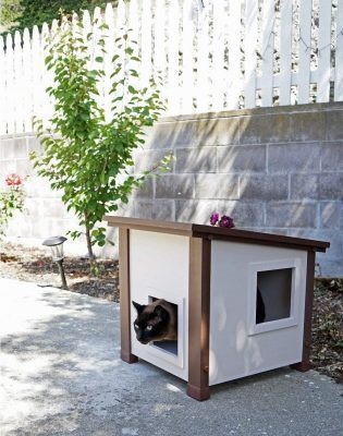 BEST BUDGET CAT HOUSE FOR OUTDOORS