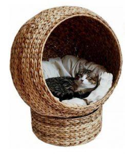 basket cat bed
