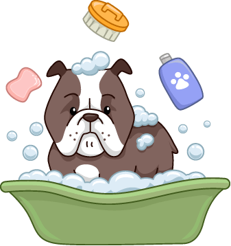 Are Dog Shampoos Hazardous?