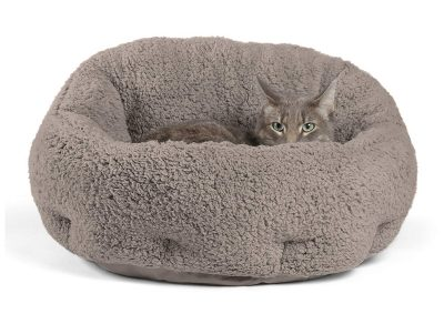 10 Best Heated Cat Bed Reviews