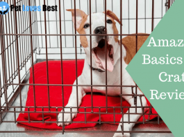 Featured Image AmazonBasics Dog Crate Reviews