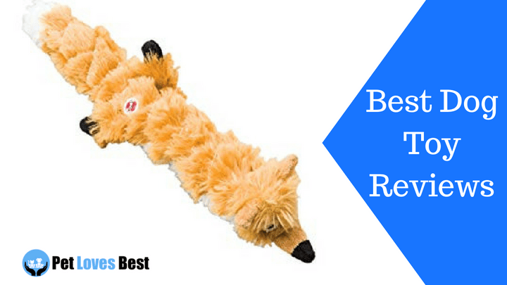 Featured Image Best Dog Toy Reviews