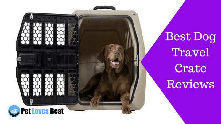 The 20 Best Dog Travel Crates Of 2019 Pet Loves Best