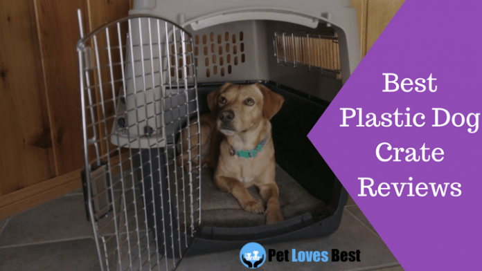 Featured Image Best Plastic Dog Crate Reviews