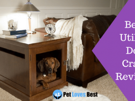 Featured Image Best Utility Dog Crate Reviews