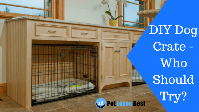 Featured Image DIY Dog Crate - Who Should Try?