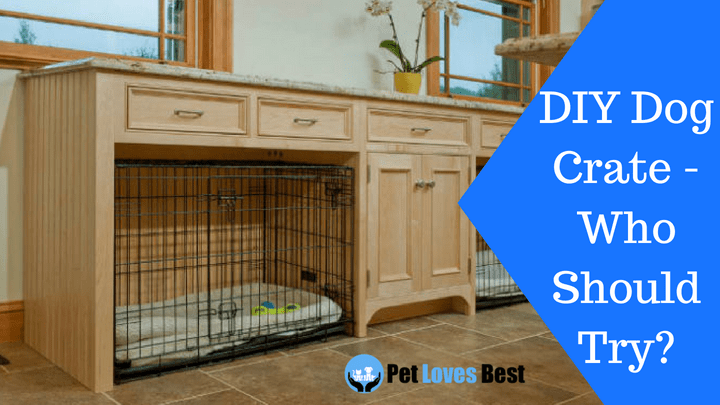 Featured Image Diy Dog Crate Who Should Try